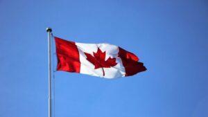 加拿大授權代表